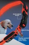 Nite Ize LED Hundehalsband